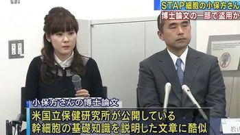 小保方晴子さんの博士論文.jpg