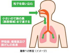 PM2.5 健康への悪影響のイメージ.png