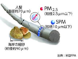 PM2.5の大きさは?.png